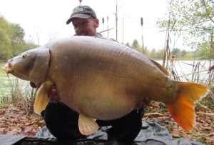 Big French fish